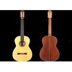 Scavino Categorie Strumenti musicali Torino a288131f31c6
