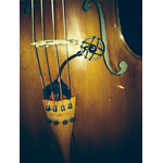 PRODIPE CL21 LANEN MICROF CELLO