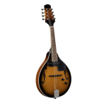 Soundsation BMA60E VS Mandolino bluegrass elettrificato