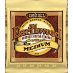 Ernie Ball 2002  Earthwood Medium